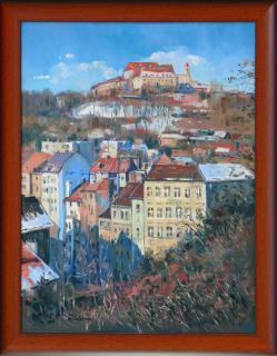 Jan Odehnal - �pilberk v zim�
